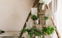 matrimonio erbe aromatiche